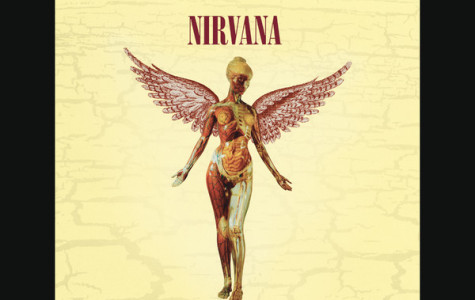 The super deluxe edition of the album contains the original album, new mixes for those songs, b-sides, and all songs from Nirvana's Live & Loud MTV performance