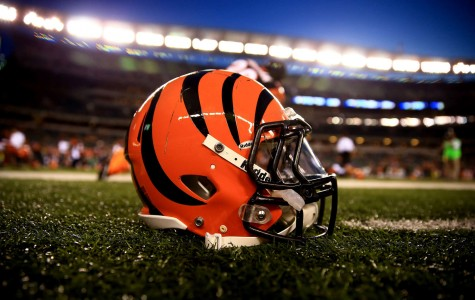 Off-season is key for ailing Bengals