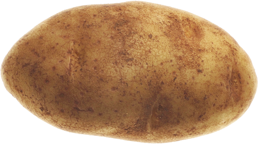 Potatoes are one of the top produced foods in the world