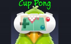 Cup Pong: boom or bust?