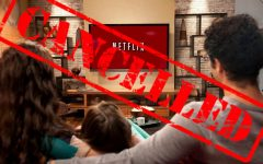 Netflix cancels fan favorites