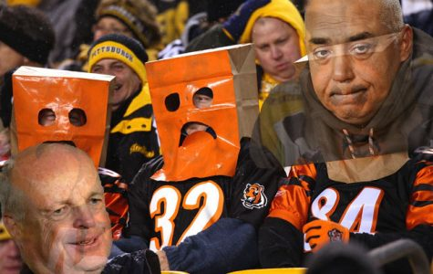 Bengals disappoint…again