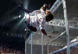 mick+foley+thrown+off+cage