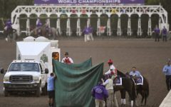 Yet another horse put down at Santa Anita