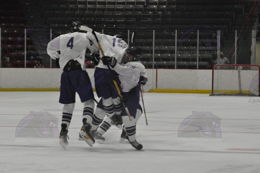 Panthers celebrate a 3-2 OT victory in Troy