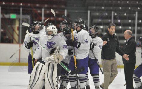 The future of Elder Hockey