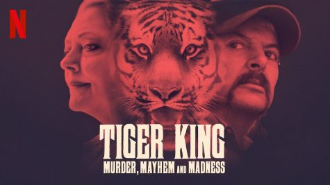 Tiger King Craziness